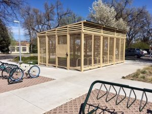 Photo of Secure Bike Shelter at University Max Station