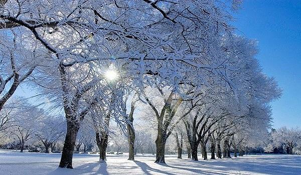 oval-winter-website